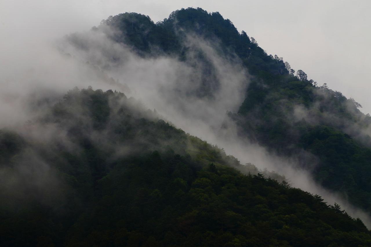 生き物の住む山